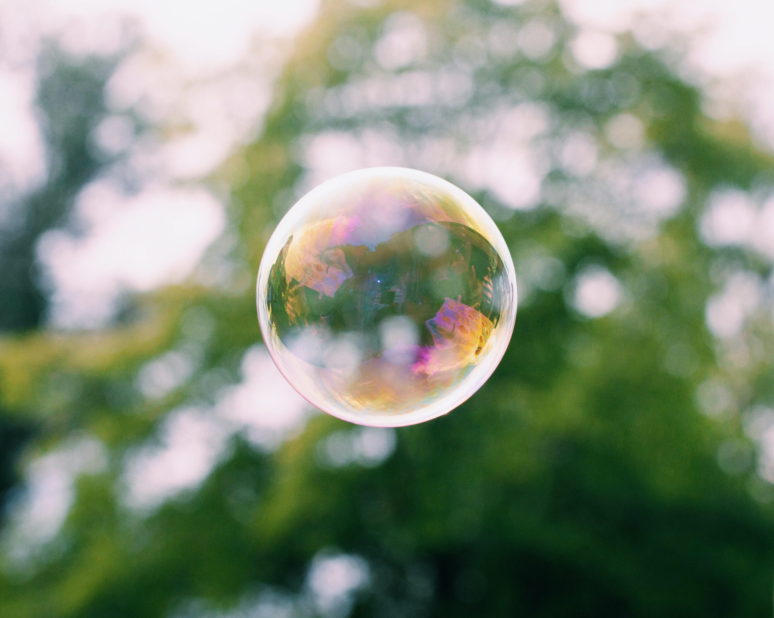 a bubble with blurred tree in background